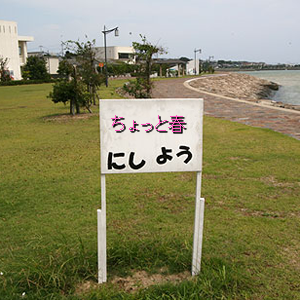 Neta_041_cocolog_oekaki_2010_03_15_